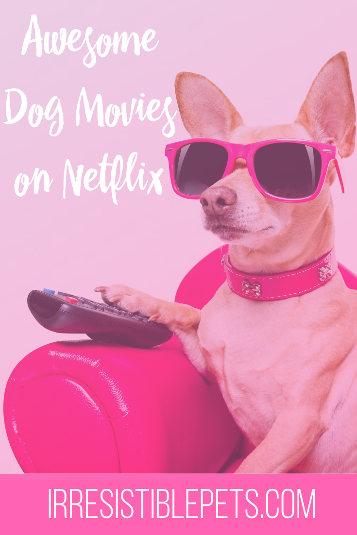 Awesome Dog Movies on Netflix